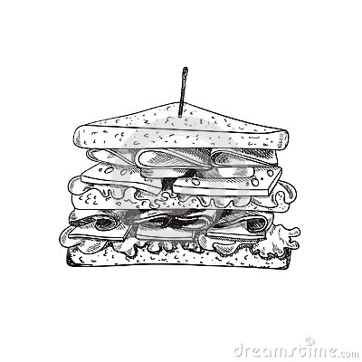 Vector Hand Drawn Sandwich with a Teethpick, Doodle Freehand Drawing, Sketched Food. Vector Illustration