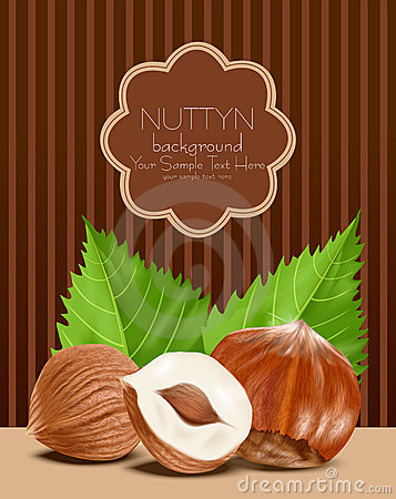 Vector hazelnut kernels with the leaves on a brown