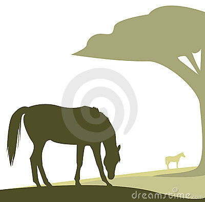 Vector horse grazing