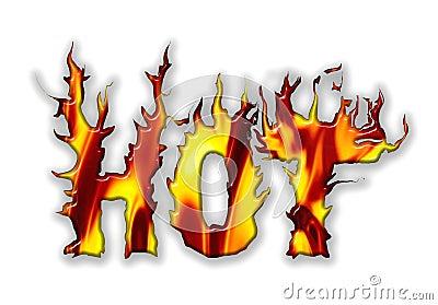 Vector Hot