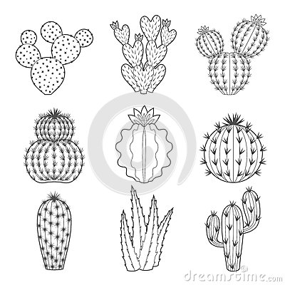 Free Vector Icon Set Of Contour Cactus And Succulent Royalty Free Stock Photos - 65025128