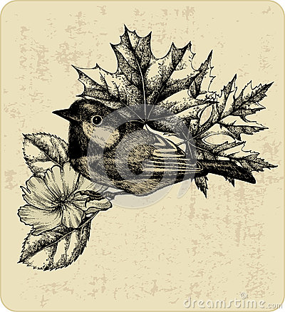 Vector illustration of the bird titmouse, leaves.