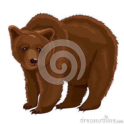 Vector Illustration Brown Bear Vector Illustration