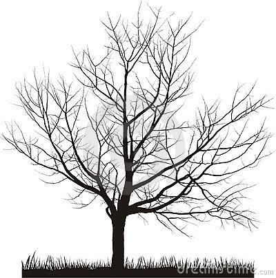 Vector illustration of cherry tree in winter