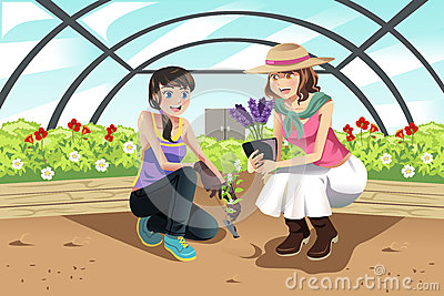 Planting in greenhouse