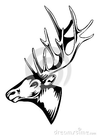 Images further 204 Cerf Geometrique in addition Cerf T C3 AAte Ethnique Mod C3 A8le 19618628 besides Deer Skull Drawing additionally 65. on deer head tattoo
