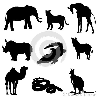 Free Vector Illustration. Image Rhino Kangaroo, Giraffe, Elephant, Zebra, Snake, Crocodile, Camel, Tiger A Black Silhouette. Stock Image - 83054191
