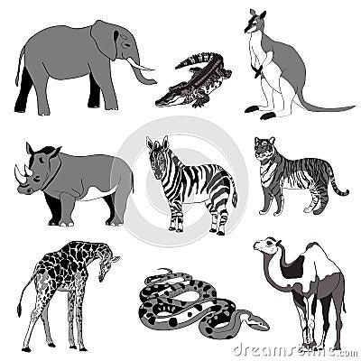Vector illustration. Image rhino kangaroo, giraffe, elephant, zebra, snake, crocodile, camel, tiger. black and white. Vector Illustration
