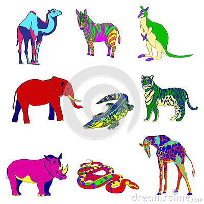 Vector illustration. Image rhino kangaroo, giraffe, elephant, zebra, snake, crocodile, camel, tiger various bright Vector Illustration