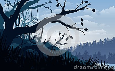 Vector illustration, Landscape view tropical forest the sky, clouds, mountain peaks, and deep jungle. for the website background Vector Illustration