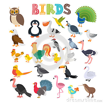 Free Vector Illustration Of Different Kind Of Birds. Cute Cartoon Bir Royalty Free Stock Photography - 76965467