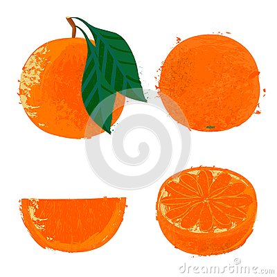 Vector illustration of orange fruits