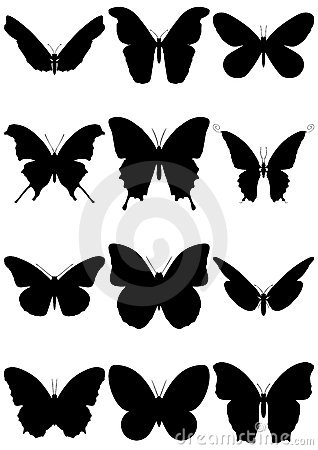 Vector illustration set of butterfly silhouettes.