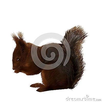 Vector-illustration-of-a-squirrel Vector Illustration