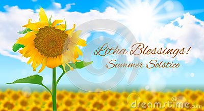 Sunny landscape with a field of sunflowers. Summer solstice Vector Illustration