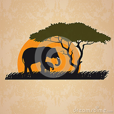 Vector illustration of wild elephants family in African sunset savanna with trees. Vector Illustration