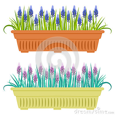 Free Vector Illustration With Flower Pot In Flat Style. Stock Photography - 58833462