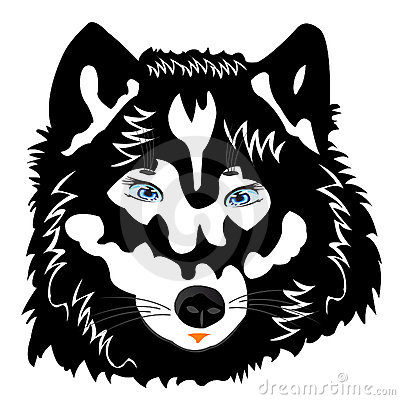 Vector illustration of the wolf on white