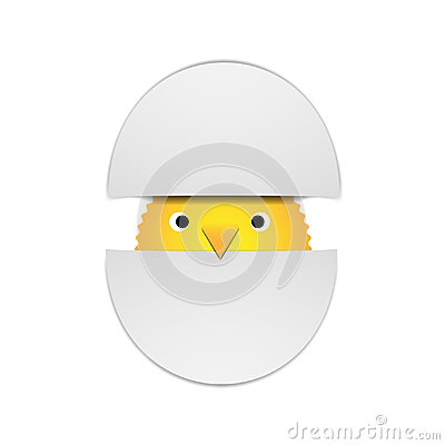Vector illustration yellow chick peeking out of two halves of a shell on a white background Cartoon Illustration