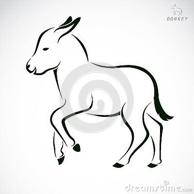 Vector image of an donkey