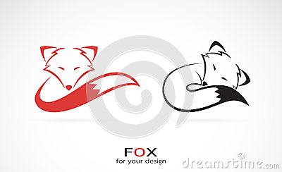 Vector image of an fox design Stock Photo