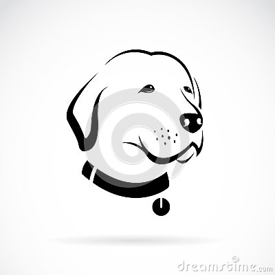 Vector image of an Labrador dog's head Vector Illustration