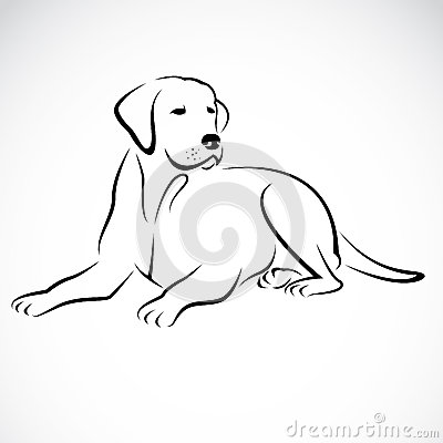 Free Vector Image Of An Dog Labrador Royalty Free Stock Photo - 34137165