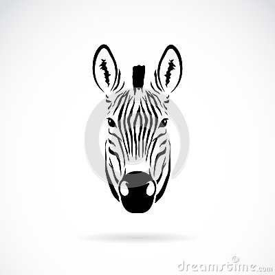 Free Vector Image Of An Zebra Head Royalty Free Stock Photo - 37693925