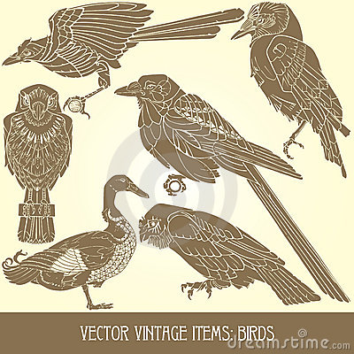 Vector items: birds