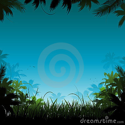 Vector jungle background