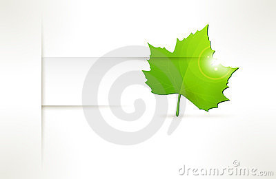 Vector label with green leaf