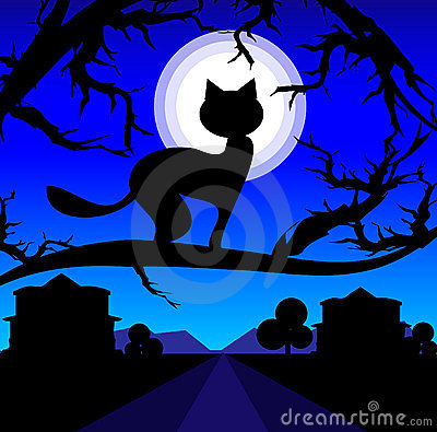Vector Lonely cat on a tree against the night sky