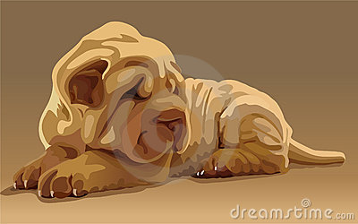 Vector lovely puppy
