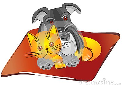 vector miniature Schnauzer dog and british cat