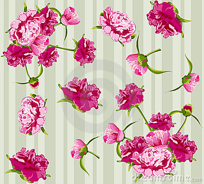 Vector peonies, seamless background