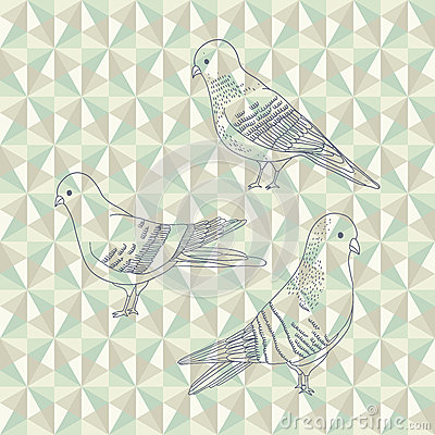 Vector pigeon birds
