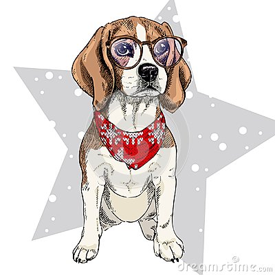 Free Vector Portrait Of Beagle Dog Wearing Winter Bandana And Glasses. Isolated On Star And Snow. Skecthed Color Illustraion Stock Photography - 102854582