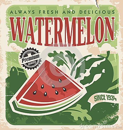 Vector poster template for watermelon farm