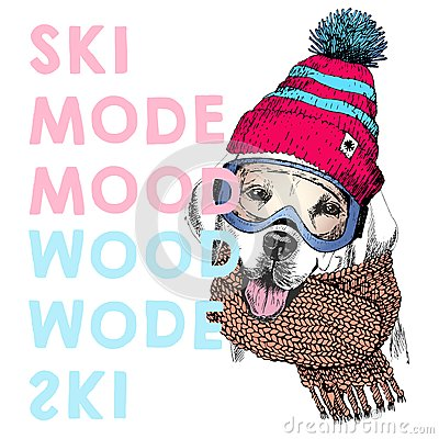 Free Vector Poster With Close Up Portrait Of Labrador Retriever Dog. Ski Mode Mood. Puppy Beanie, Scarf And Snow Goggles. Stock Image - 80125941