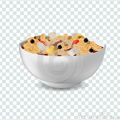 Vector realism style illustration muesli in bowl Vector Illustration