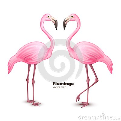 Free Vector Realistic 3d Pink Flamingo Set Royalty Free Stock Photography - 110974117