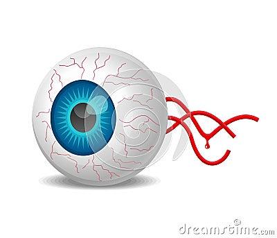 Vector realistic detached eyeball