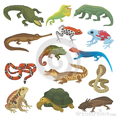 Free Vector Reptile Nature Lizard Animal Wildlife Wild Chameleon, Snake, Turtle, Crocodile Illustration Of Reptilian  Royalty Free Stock Photography - 104366797