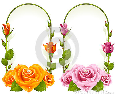 Vector rose frames  on white background
