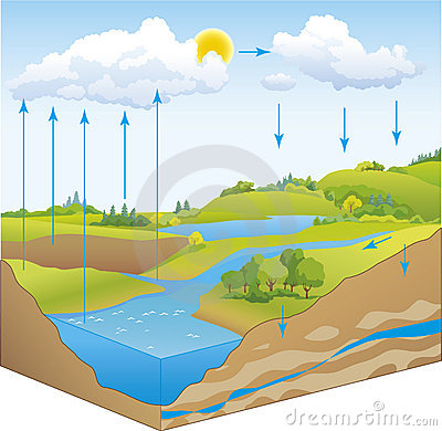 Vector scheme of the water cycle in nature
