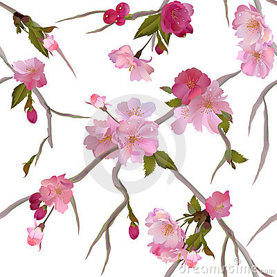 Vector Seamless background with sakura flowers