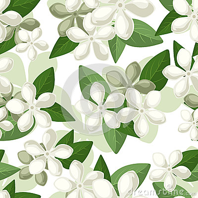Free Vector Seamless Background With White Flowers. Royalty Free Stock Photography - 29668627