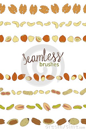 Vector seamless border brushes with nuts Vector Illustration