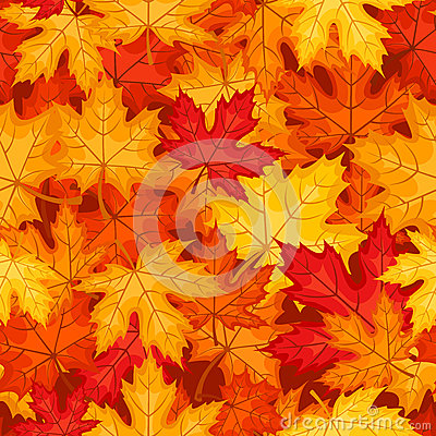 Vector seamless pattern with autumn maple leaves.