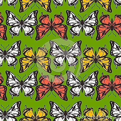 Vector seamless pattern of butterflies